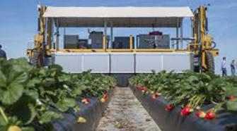 Futuras cosechas en EEUU, en manos de robots