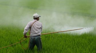 Capacitan a funcionarios mexicanos para el registro de plaguicidas