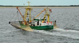 Global Fishing Watch, plataforma que monitorea la pesca a nivel global