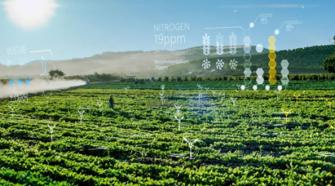 Microsoft busca mitigar la crisis alimentaria con agrotecnología