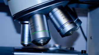 Obtener genoma de cultivos puede mejorar producción agrícola: experto