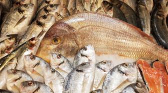 Refuerzan vigilancia en el sector pesquero y acuícola de México