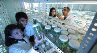Tecnología e innovación para producir alimentos sanos en México