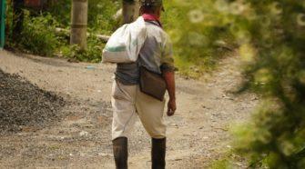 Urgen más recursos para sostener la producción agropecuaria en México