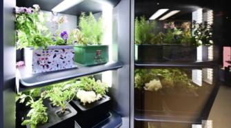 Presentan refrigerador que cultiva vegetales en 25 días